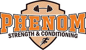 Phenom Logo17_final_color.jpg