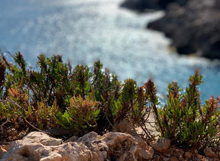 5 benefits of exploring Malta's outdoors without kids' buggies.
