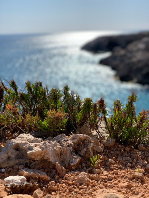 Malta outdoors