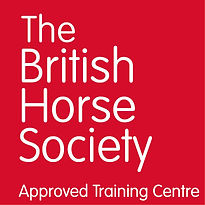 BHS-Approved-Training-Centre-w-on-r.jpg