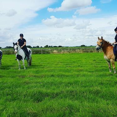 Field riding