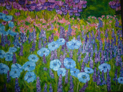 Blue Anemones.JPG