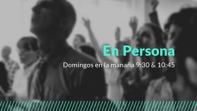 Quarter En Persona.png