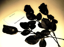Les roses noires_edited