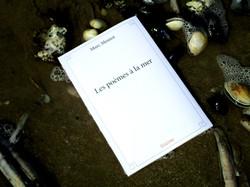 Les poèmes à la mer2