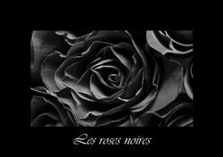 01 - Les roses noires