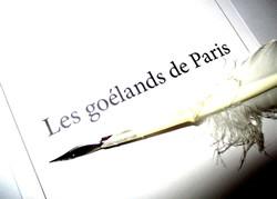 Les_goélands_de_Paris_Plume