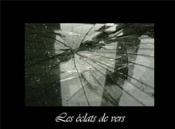 28_-_Les_éclats_de_vers