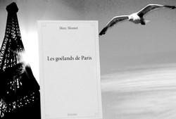 Les_goélands_de_Paris_Livre