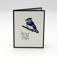 Blue Jay Prayers
