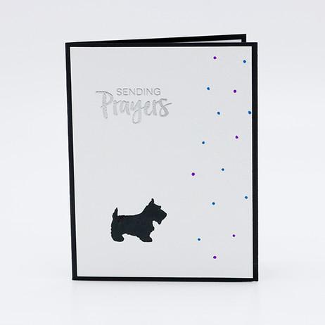 Pet - Prayers Terrier