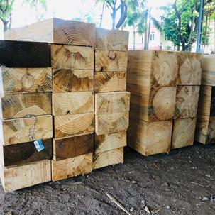 pinewood tamilnadu ambika