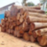teak-wood-round-logs-500x500.jpg