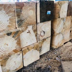pinewood pollachi