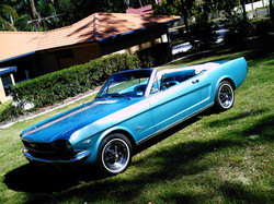 Wayne's Mustang