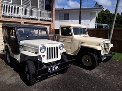 Basil Jeeps