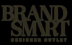 Brandsmart logo (1).png