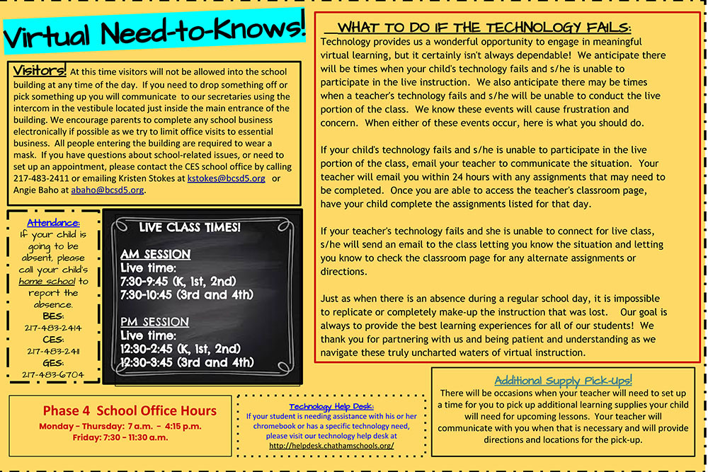 Virtual Learner Need to Know Flyer