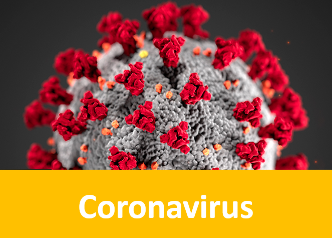 novel coronavirus or covid