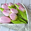 Thumbnail: Tulip Flower Handcut Template