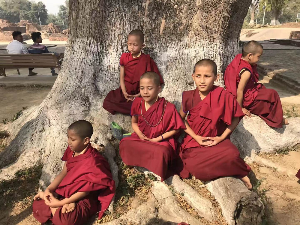 young monks in Sarnath, India