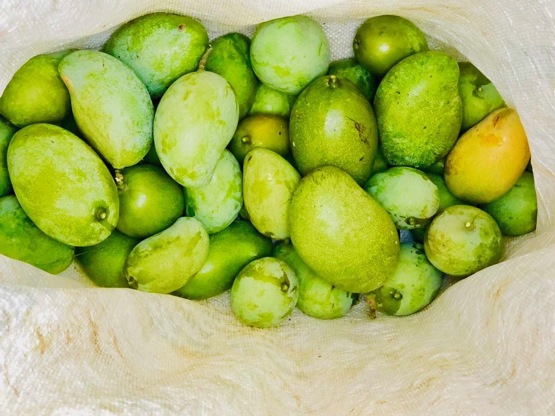 VVI Mangoes