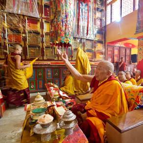 Thrangu Tashi Choling ~ Boudha