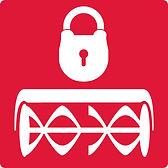 hss-auger-interlock.jpg