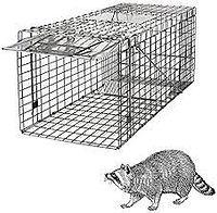 animal trap.jpg
