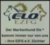 EZFG Elozucht