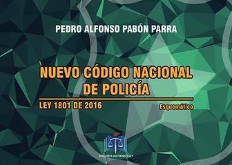 Codigo Penal Esquematico Pedro Alfonso Pabon Pdf Download