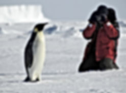 photographe terra darwin