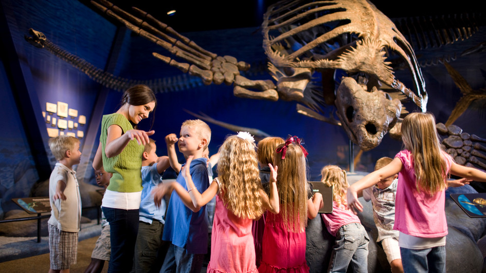 Could Evolution Ever Bring Back The Dinosaurs?