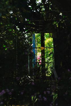 Le_miroir_du_salon.jpg