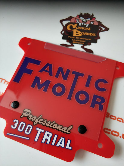 Fantic 300 Professional