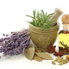 Homeopathy Courses Enlightening Natural Health Education