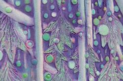 """""""LA CEYBA SAGRADA"""" (Sacred Ceyba) NeoCrotalic Original Artwork"""