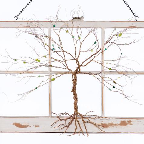 Tree of Life-Jamee Mascia_01.jpg