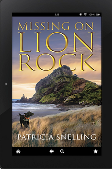 3D cover Missing on Lion Rock.png