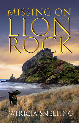 Missing On Lion Rock front cover image.p