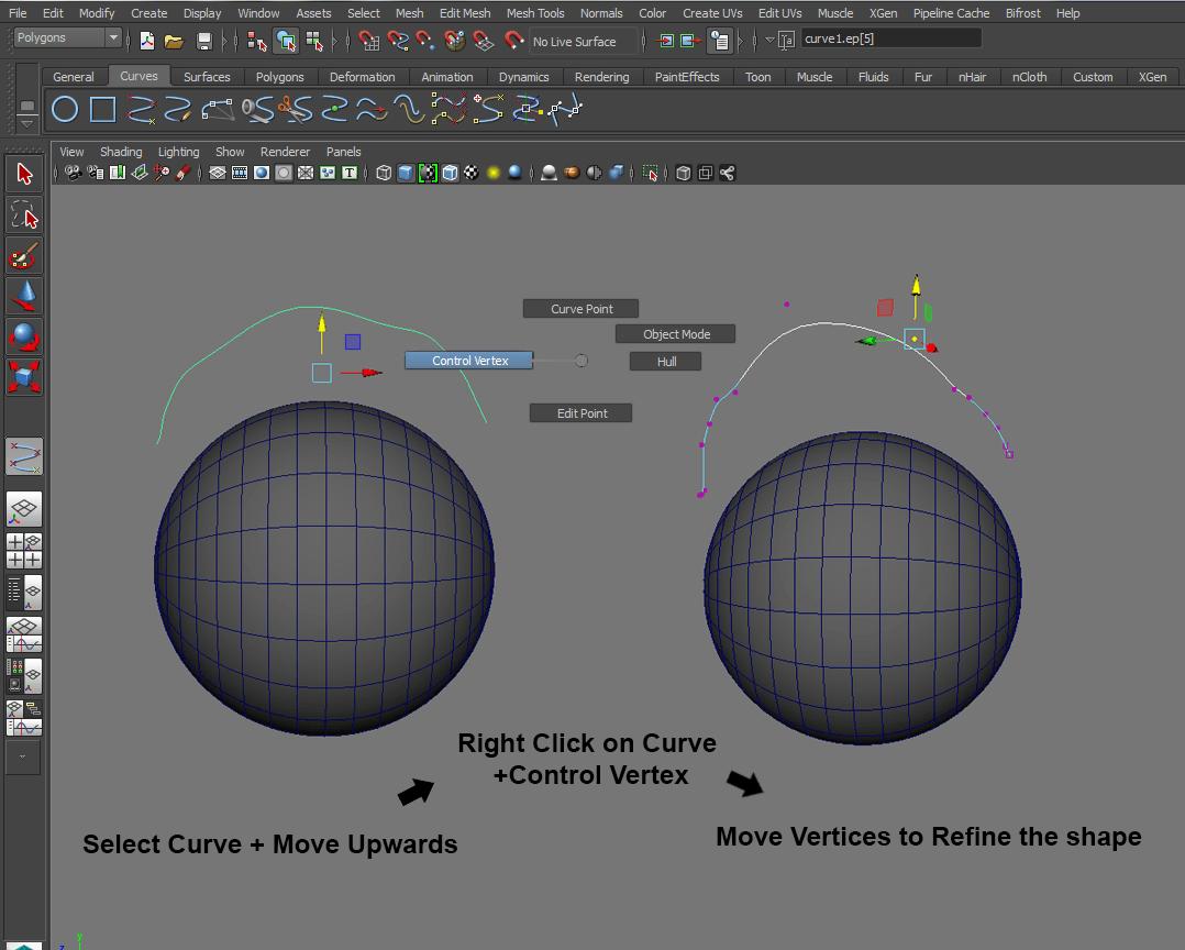 Move the edge fine curve upwards and refine the shape.