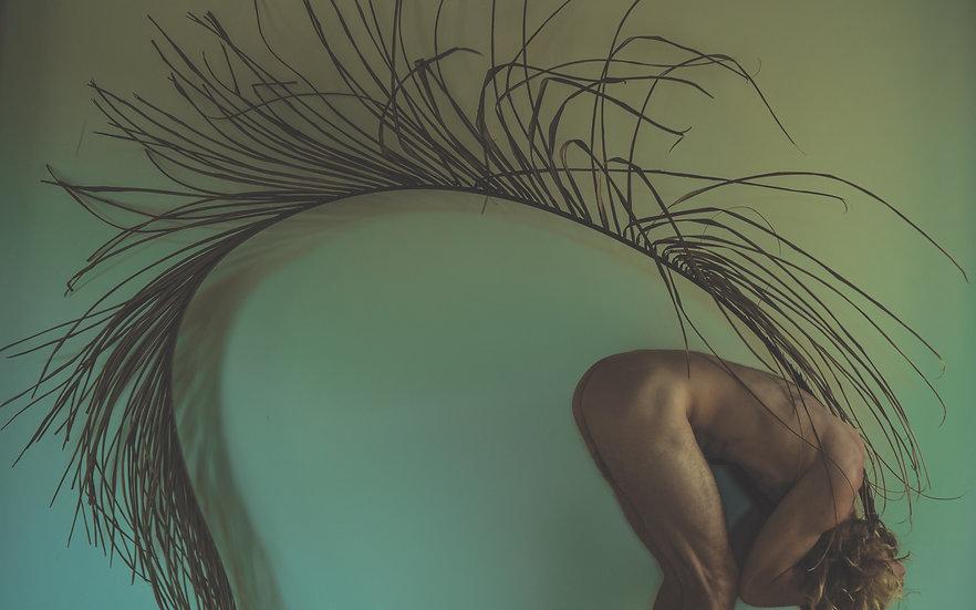 Organic.Body | Feral