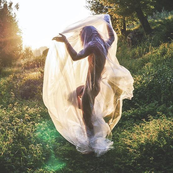 Plastic.Organic | Sunlight Cocoon