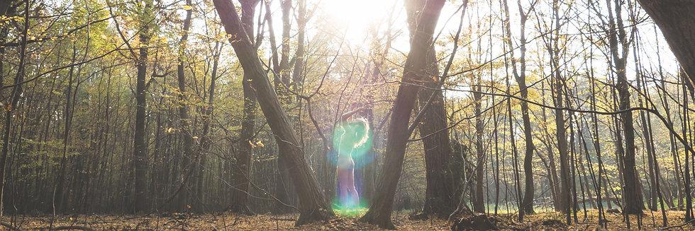 Sun.Sync | Ethereal Body