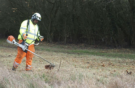 Scrub clearance_Feb-341.jpg