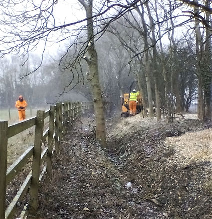 Tree & vegetation clearance - after