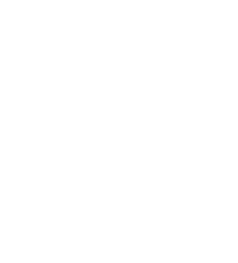 mushroom-3@2x.png