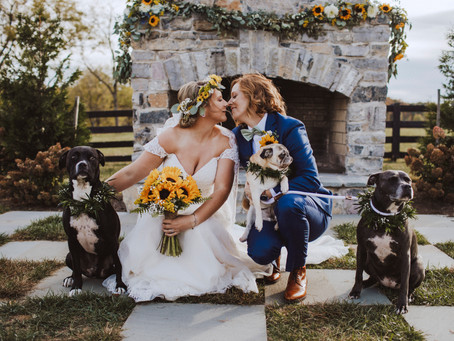 How to Pick the Your Wedding Photographer