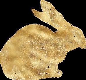 bunny-illustation@2x.png