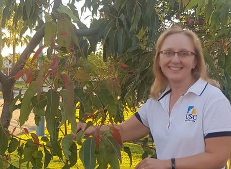 Local Eucalypts Could Help Koalas Fight Retrovirus